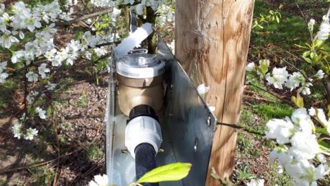 un compteur d eau sur une rampe de micro-aspersion